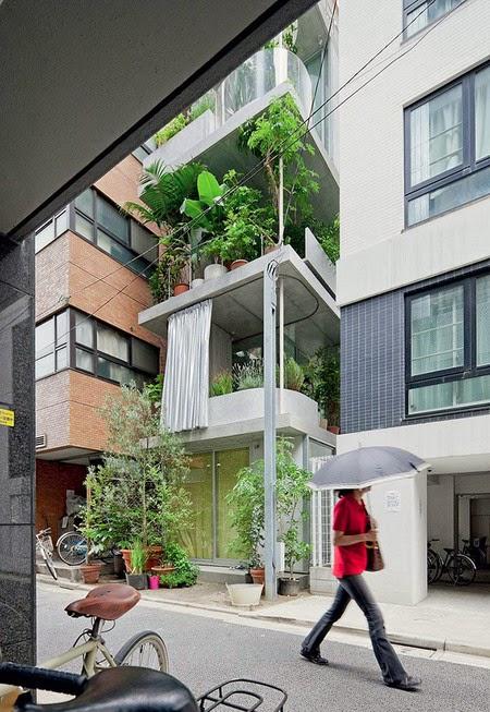 rumah unik, taman vertikal, rumah taman, terunik, rumah terunik