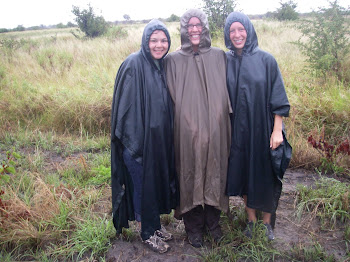 A wet and wonderful hippo search