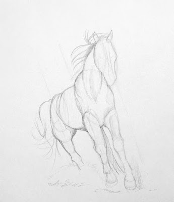 Step 2 How To Draw a Horse