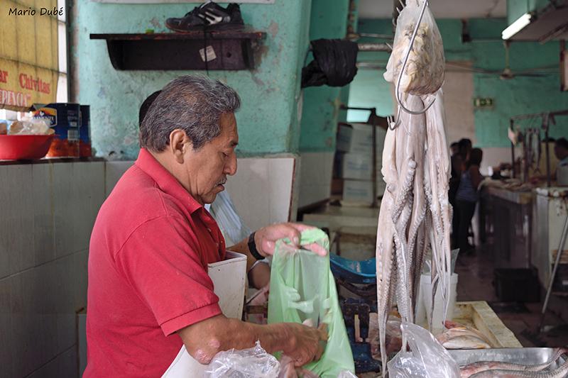 Vendeur de poisson au marché municipal de Mérida