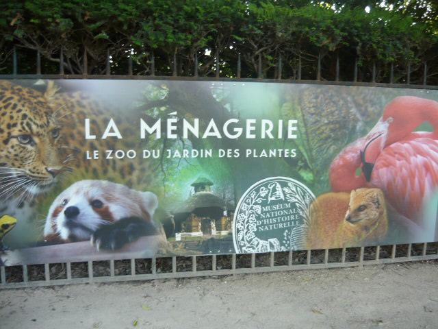 La ma tresseenmaillotdebain les vacances autrement 3 - Jardin des plantes paris dinosaures ...