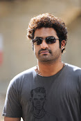 Jr Ntr Photos from Oosaraveli Stylish Handsome-thumbnail-10