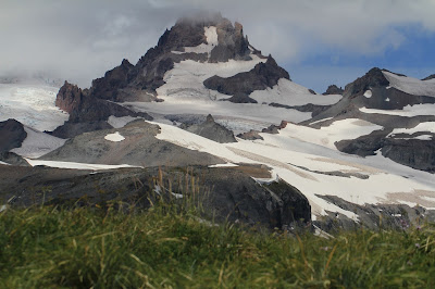 Little Tahoma from the Cowlitz Divide