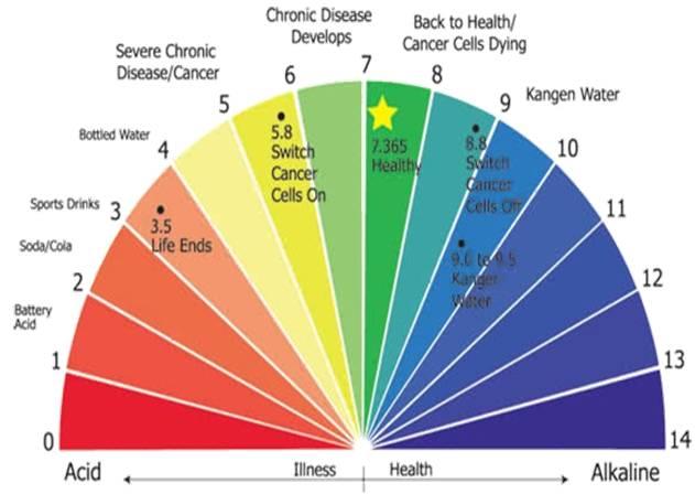 Cara Diet Alkaline dan Manfaatnya