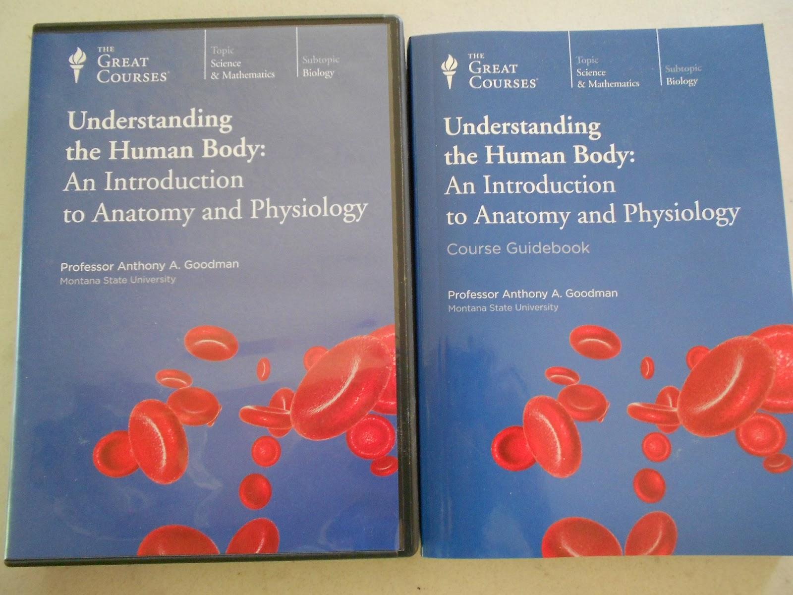 Perfecto Anatomy And Physiology Dvd Course Festooning - Anatomía de ...
