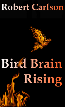 Bird Brain Rising