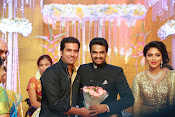 Amala paul vijay reception-thumbnail-56
