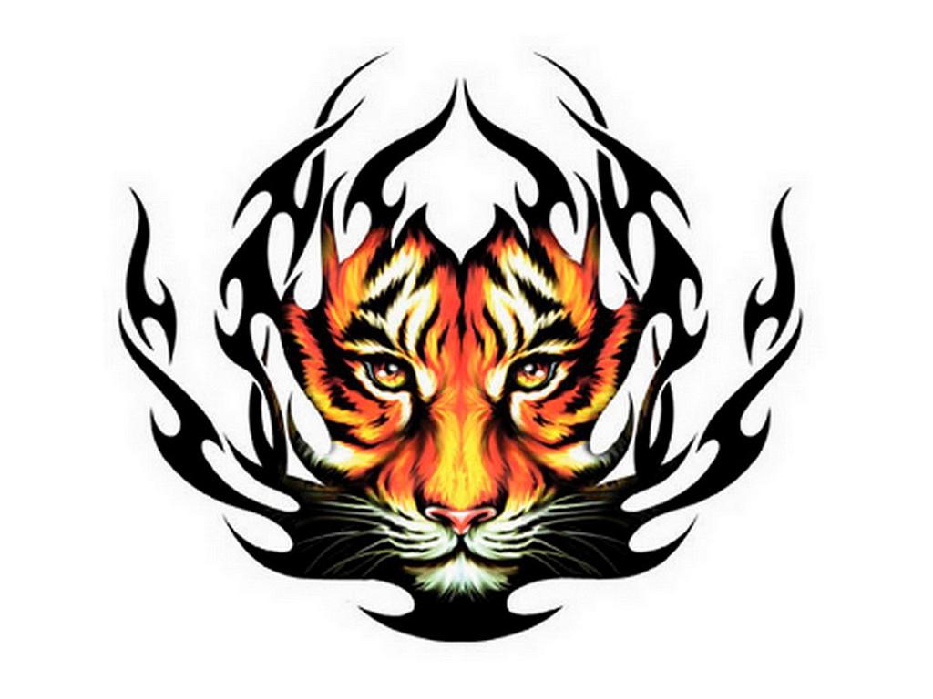 http://4.bp.blogspot.com/-XfGl4HI4z3M/Tpu3yp0eciI/AAAAAAAAAYc/Yw3JOZ4hK6A/s1600/Tiger+wallpaper+3d+%25281%2529.jpeg