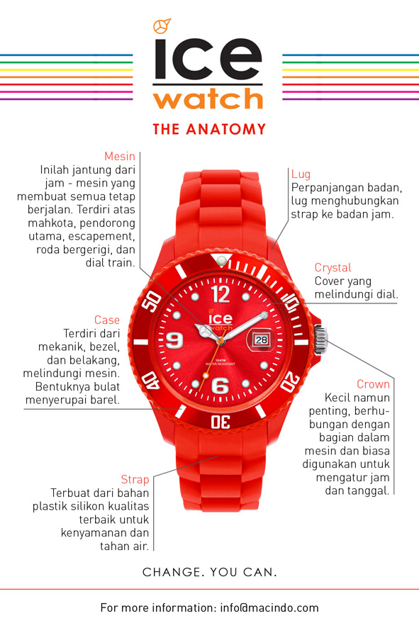 Macindo The Anatomy Of Watch