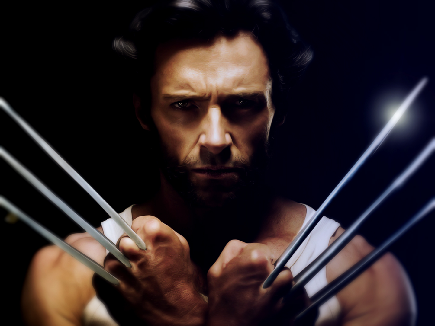 Wolverine 2014 HD Wallpaper
