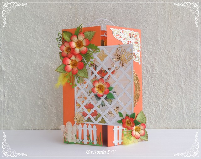 Cards crafts kids projects fancy fold explosion card fancy fold explosion card bookmarktalkfo Gallery