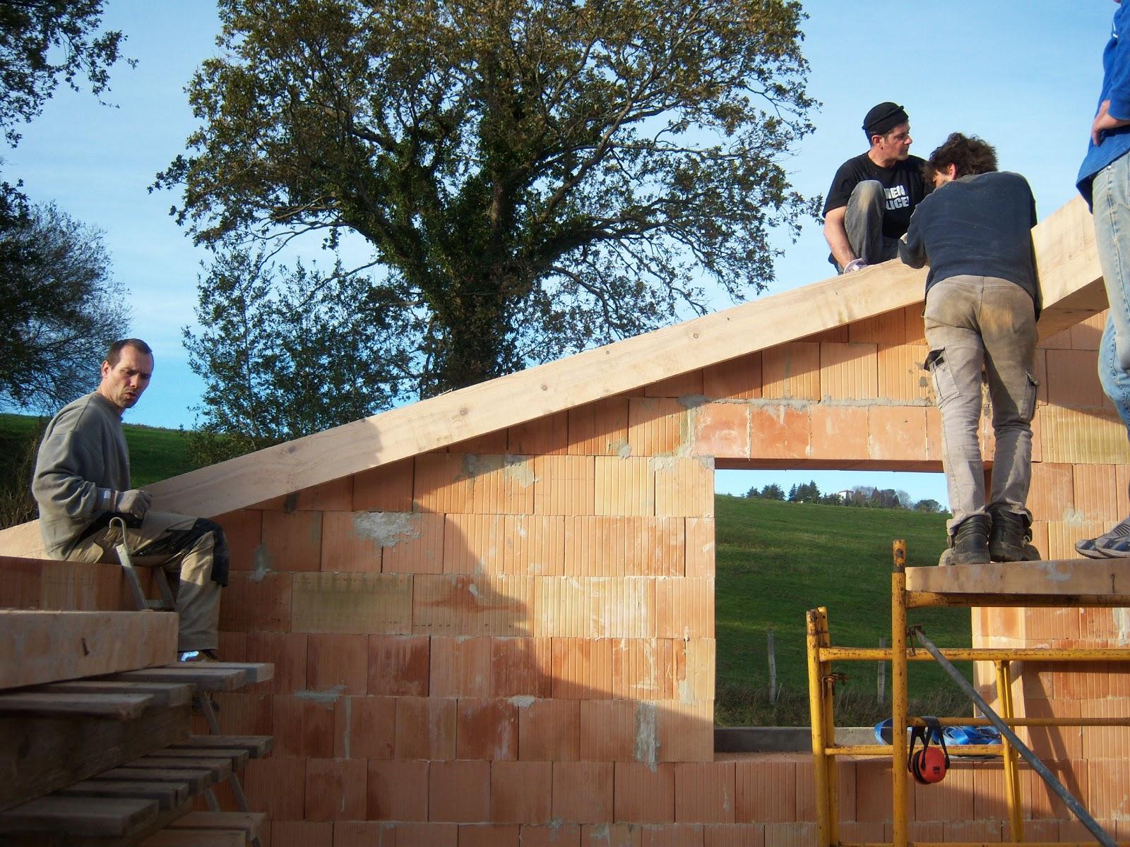 Andocarpinteando tejado con aislante de fibras de madera for Tejados de madera casas