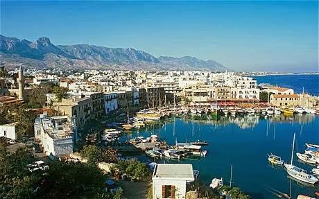 cipru-iarna