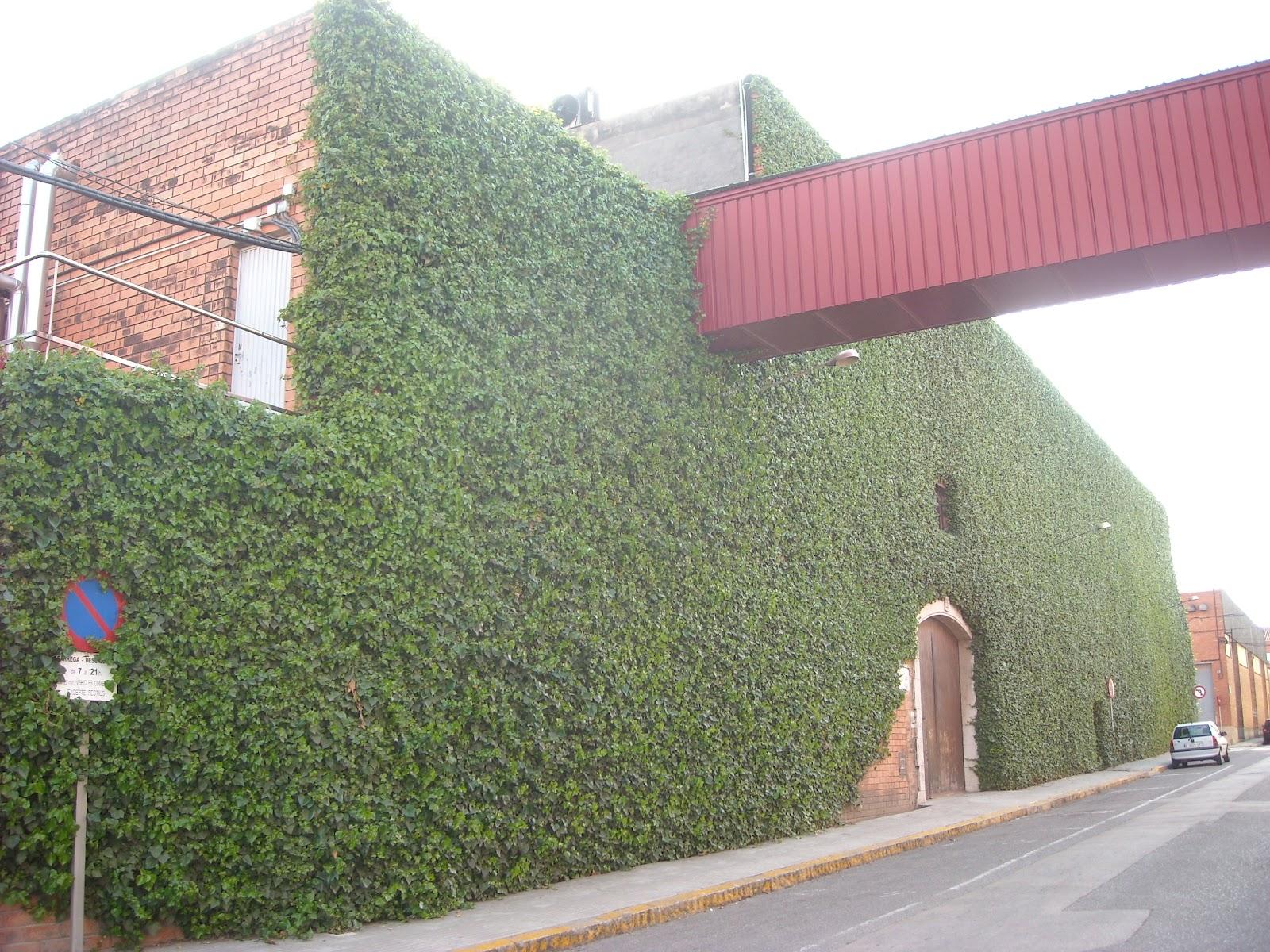 Es esta una fachada verde jardines verticales y for Muros y fachadas verdes jardines verticales