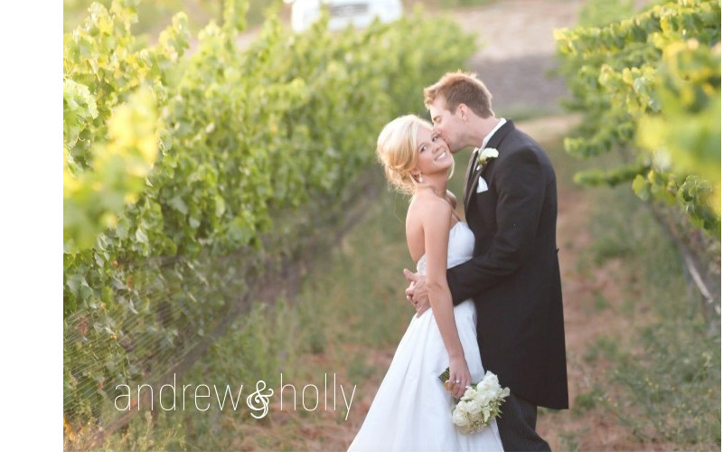andrew & holly