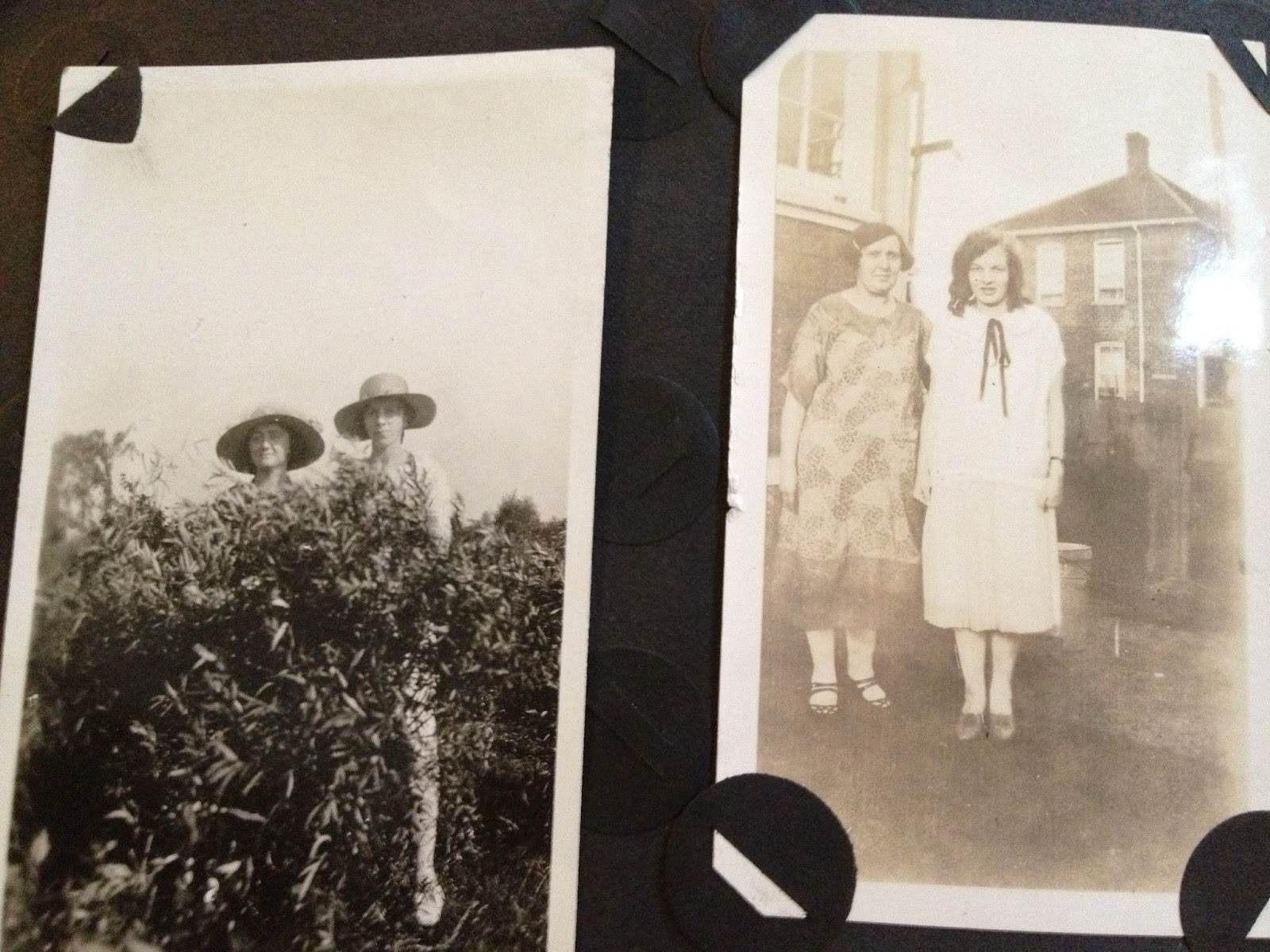 WW 1 Photo Album Archive page 25