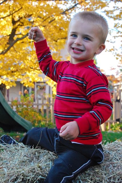Fall kid hay bale photos