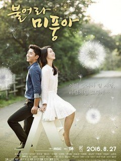 Ngọn Gió Đời Tôi-Blow Breeze (2016)