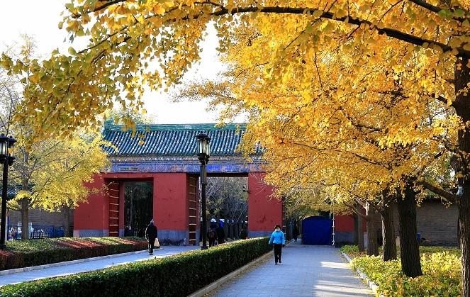 Impression of Beijing:... Ditan