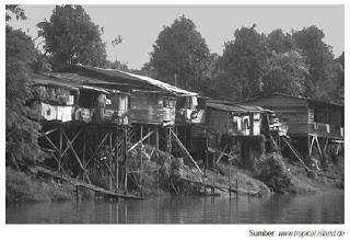 Pola Persebaran dan Permukiman Desa