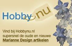 Logo Weblog Hobby Nu