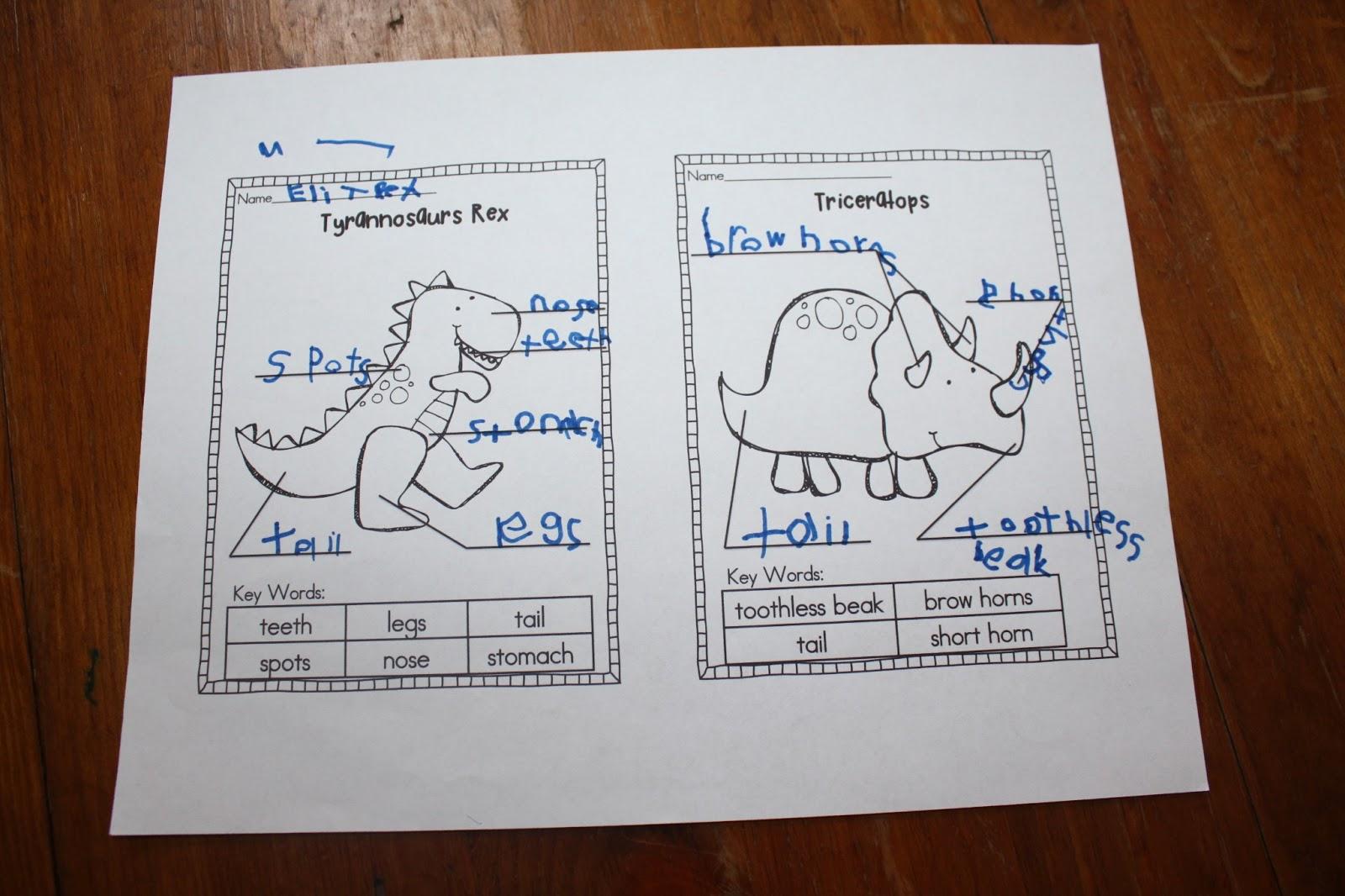 Dinosaurs interactive notebook venn diagrams network visio shapes dinosaurs interactive notebook venn diagrams dinosaurs interactive notebook venn diagrams pooptronica Gallery