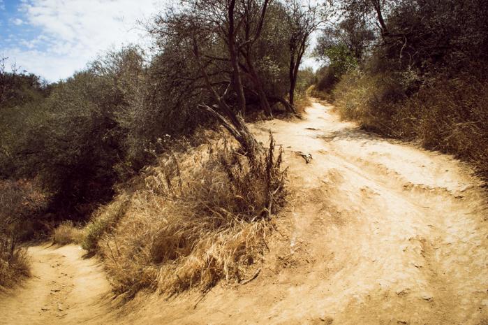 temescal canyon santa monica california