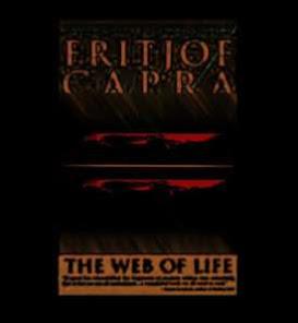 Capra's Chaos Theory = Gambling