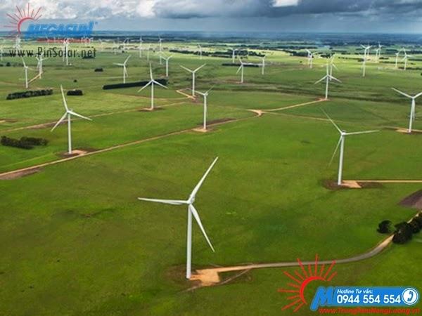 Dự án trang trại gió Đồi Pilot