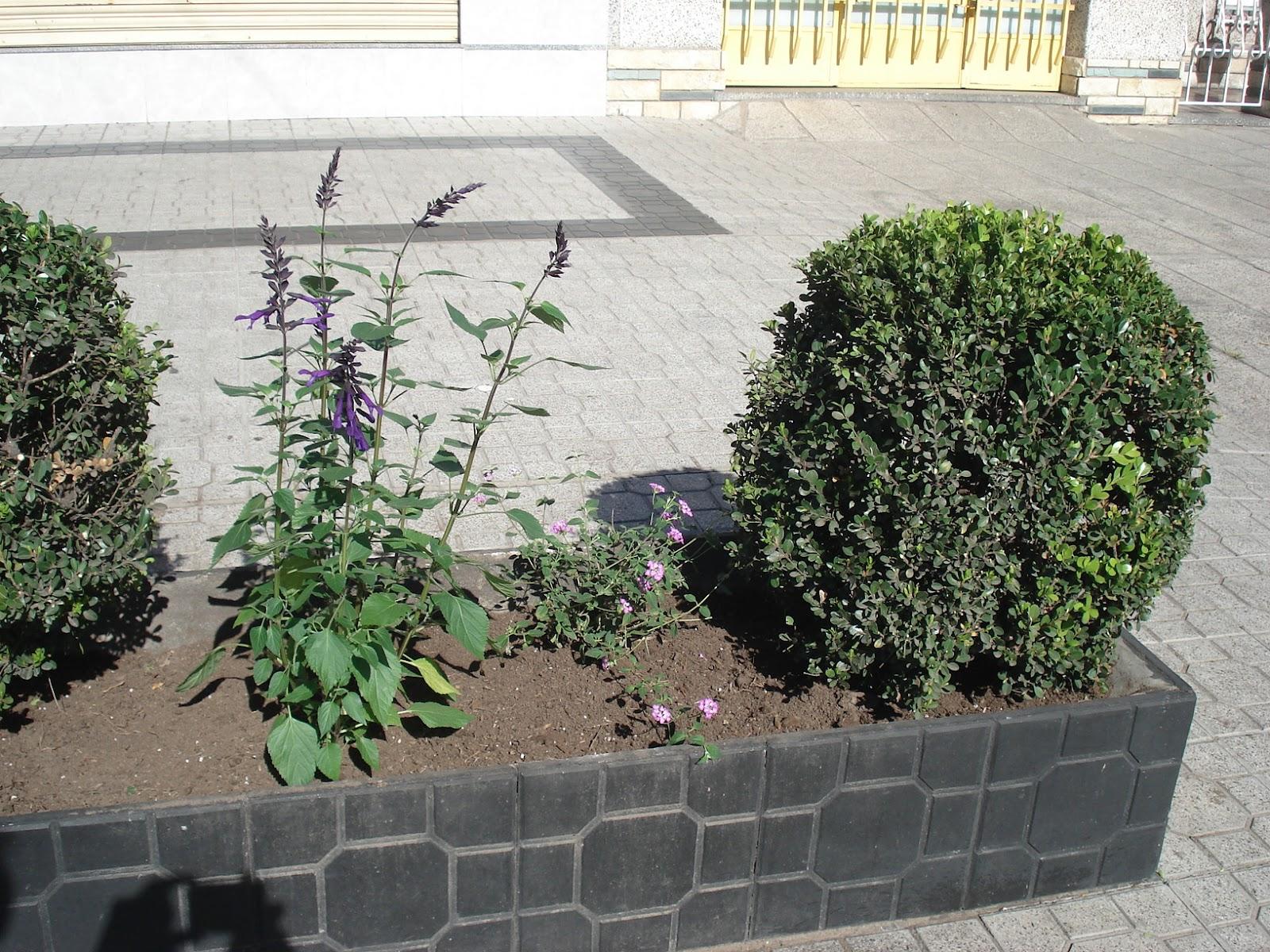 Reverdir jardineria y paisajismo heladeria for Pdf jardineria y paisajismo