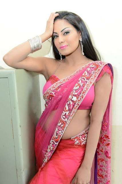 Hot Actress Veena Malik Cleavages In Blouse