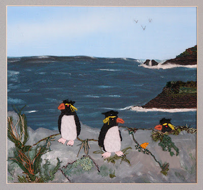 Rockhopper penguins, rock hopping in the Falklands!