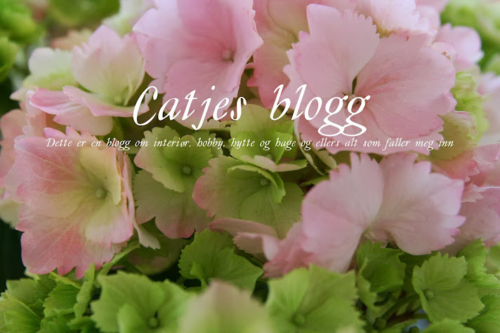 Catjes blogg