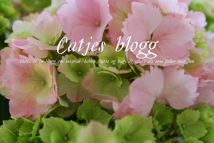 Catjes blogg