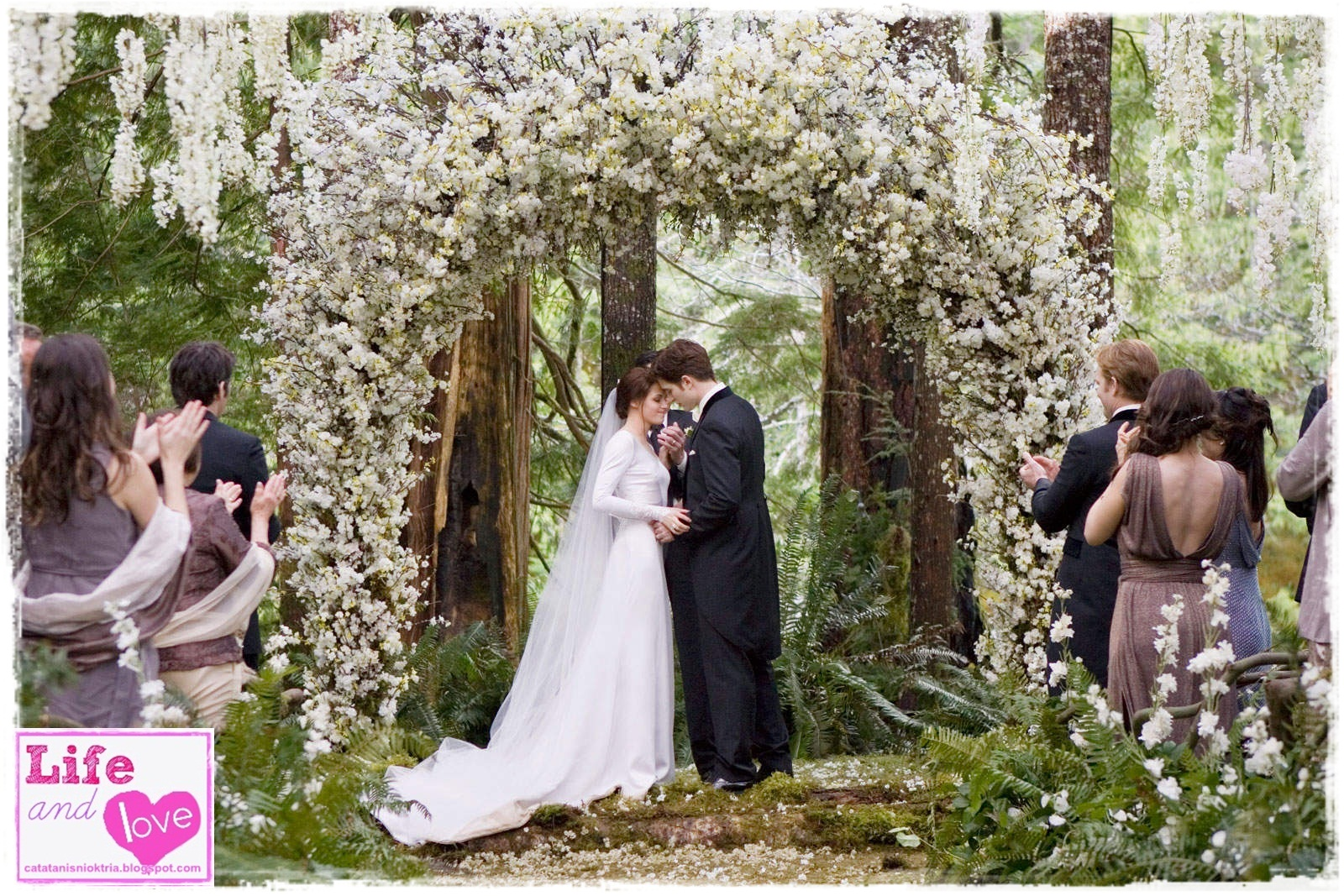 EN-AI-YO: Bella Swan\'s Wedding Gown