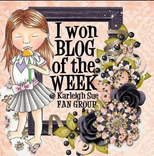 KS Blog of the Week
