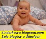 spis blogow