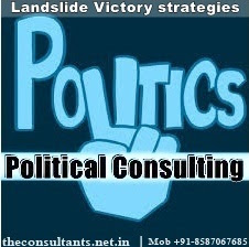 Political Consulting