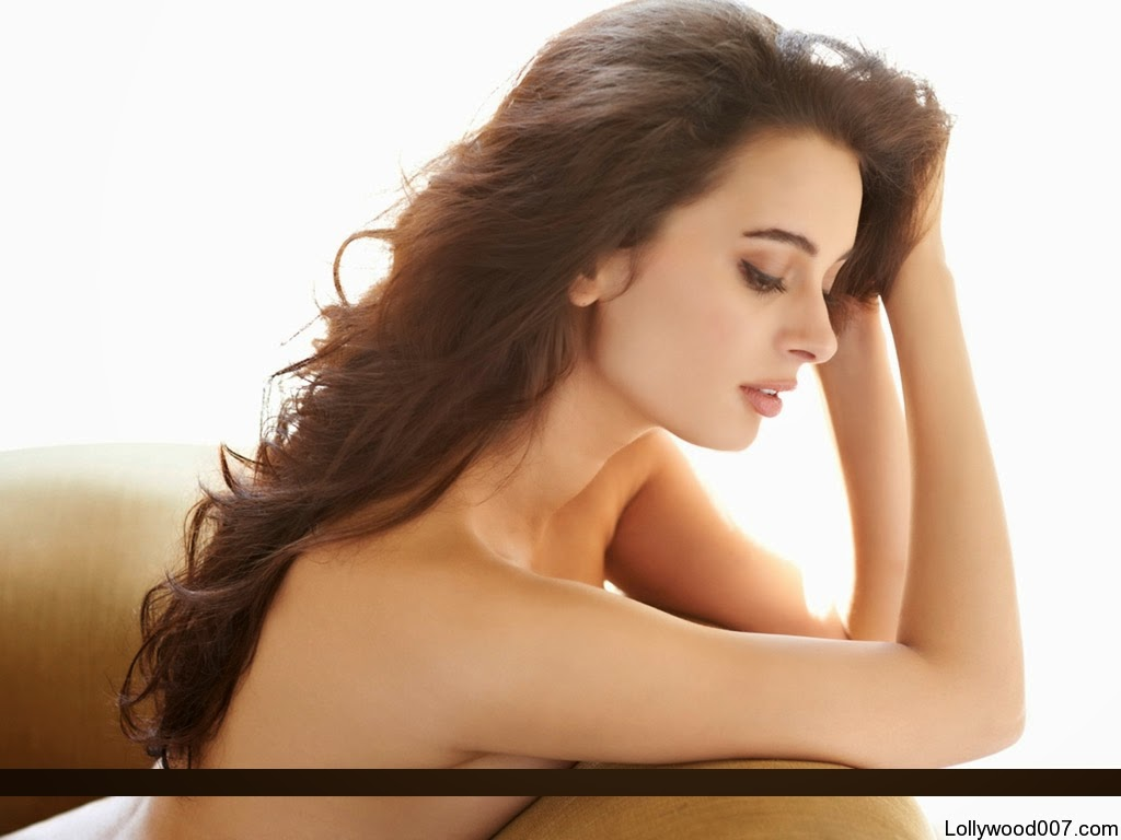 Evelyn Sharma Hot hd wallpapers bollywood sexy actress