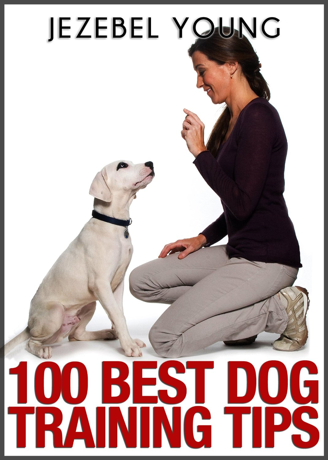 ViRT News: Book Review - 100 Dog Training Tips by Jezebel Young