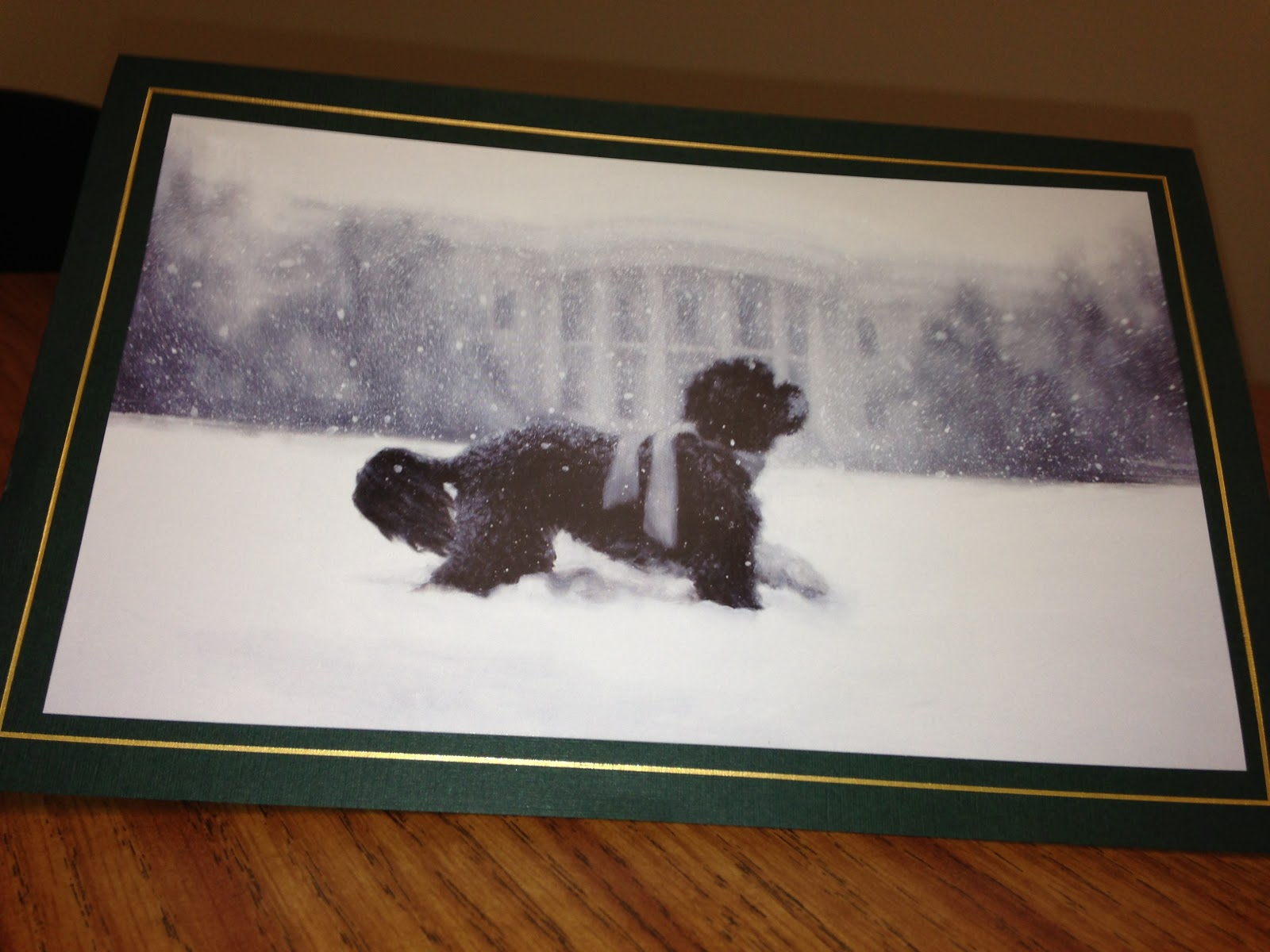 Utah office of health disparities christmas greetings from the christmas greetings from the white house ohd has friends in high places and those friends have a cute dog m4hsunfo Choice Image