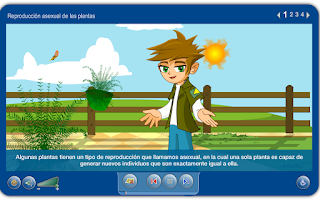 http://www.juntadeandalucia.es/averroes/carambolo/WEB%20JCLIC2/Agrega/Medio/Las%20plantas/contenido/cm07_oa05_es/index.html