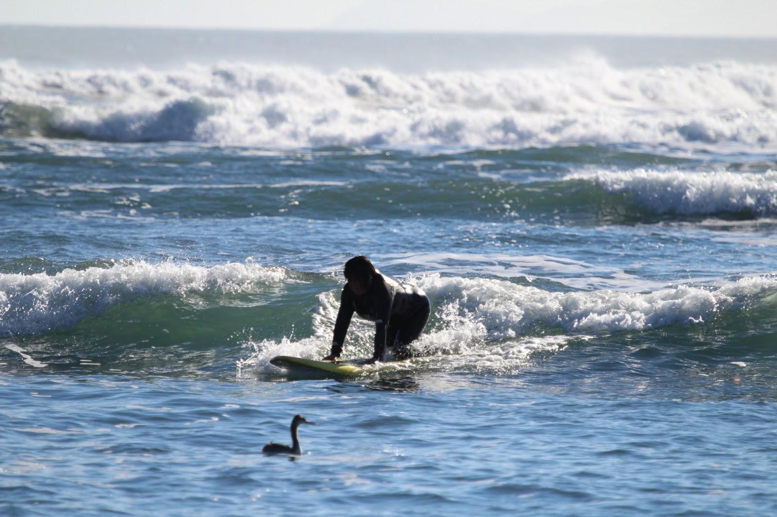 Women naked standing ocean waves, Ara mina nude pictures