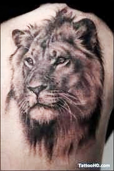 Tattoo Singa - Lion Tattoos