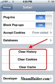 remove web history, cookies and cache from IPhone