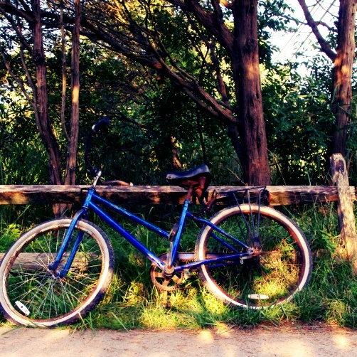 My trusty stead Fire Island bike riding