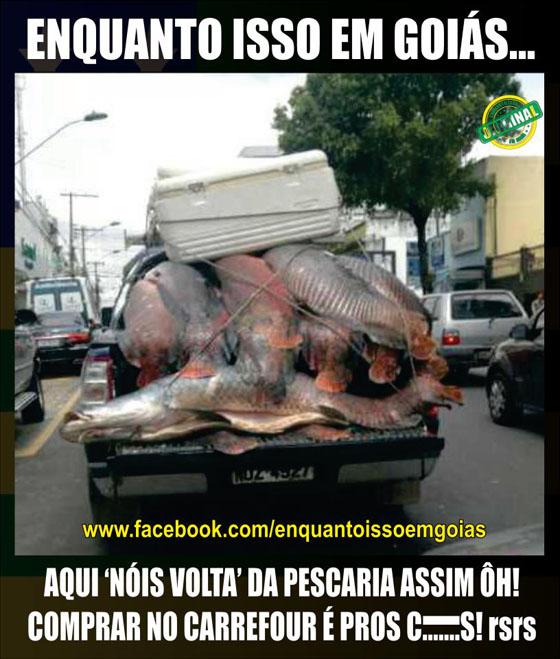 MOTIVACIONAIS: Enquanto isso em Goiás... - Comprar peixe no carrefour é para os fracos...