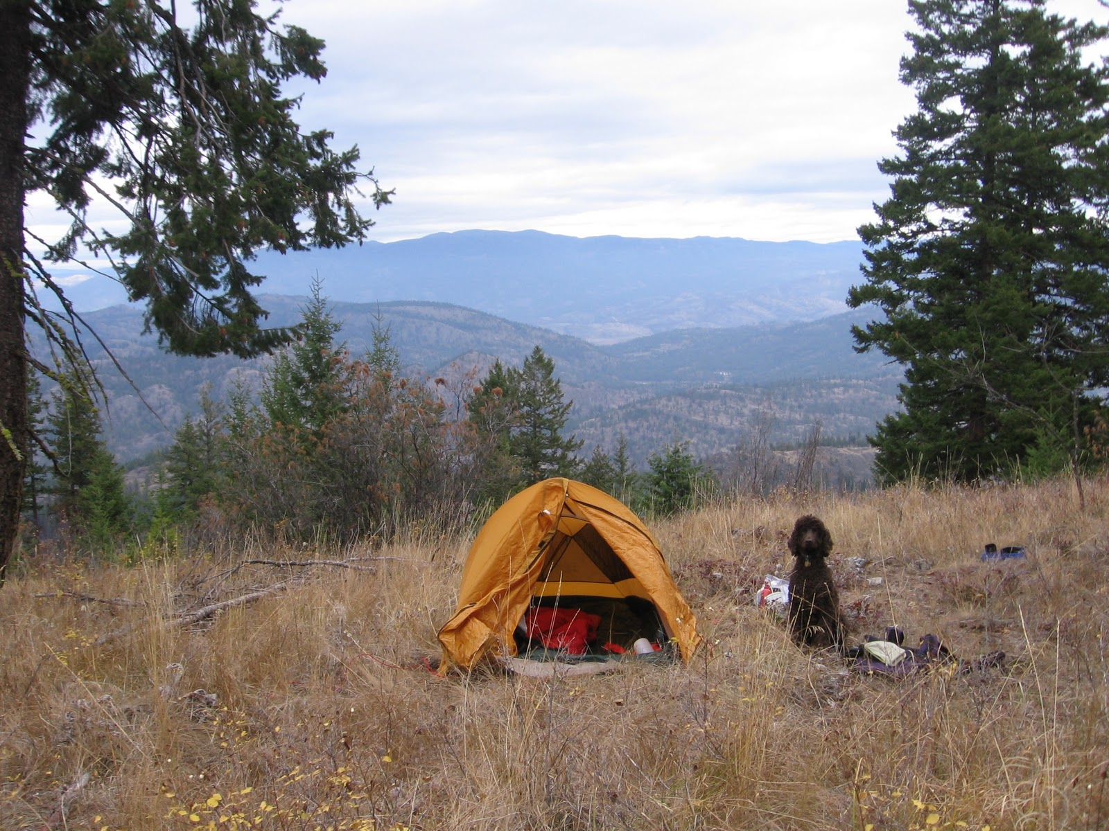 Texsport Saguaro Bivy Shelter Tent & R-Dub Outdoors: Top 10 Things for Backpacking
