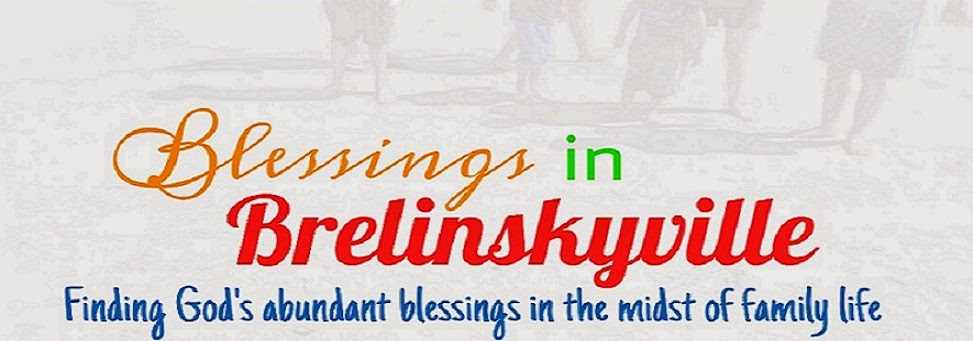 Blessings In Brelinskyville