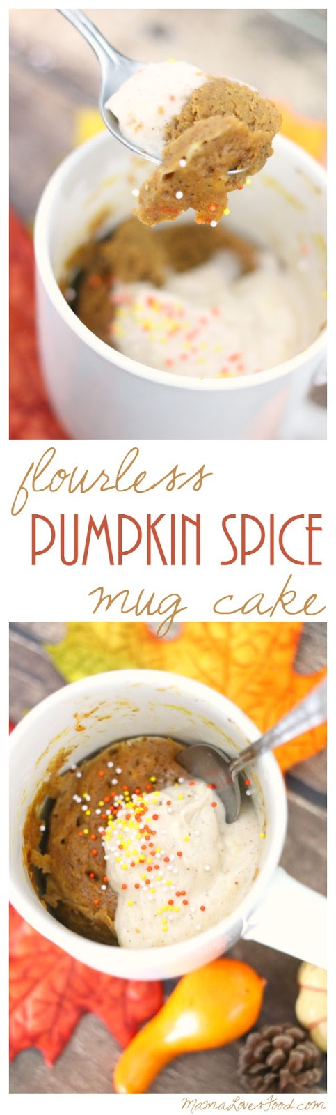 Flourless Pumpkin Spice Mug Cake Recipe